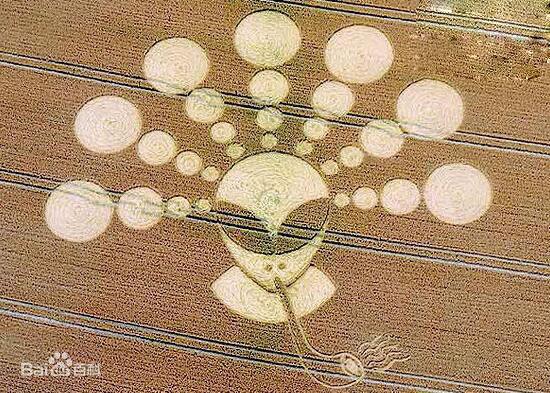 麦田怪圈真相,外星人的绝美画作(图片欣赏)