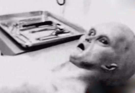 罗斯威尔事件,飞碟中发现外星人尸体