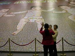 世界上最大的照片拼图,面积为660.525平方米