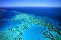 世界上最大的珊瑚礁群:澳大利亚的大堡礁(透明清澈的海中野生王国)