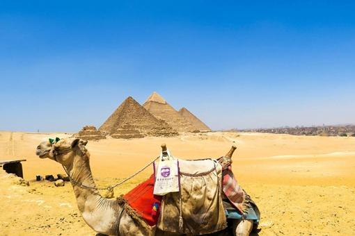 埃及文明与华夏文明哪个早一些?