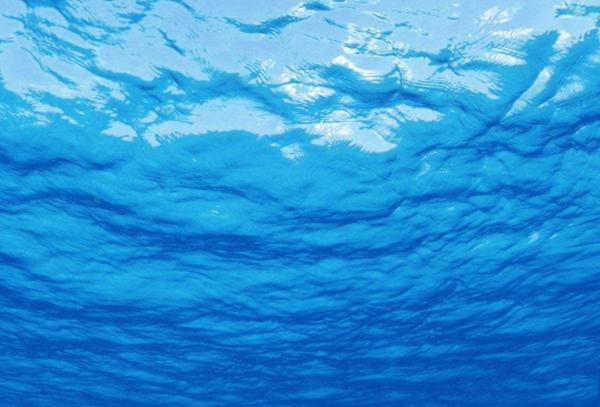 海底究竟有多恐怖?深海十大未解之谜