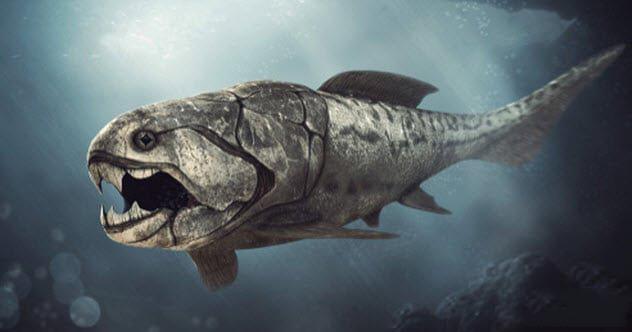 邓氏鱼怎么灭亡的?远古海洋霸主邓氏鱼的十大真相