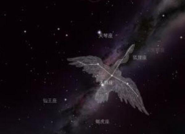 宇宙最大星球十大排名,红超巨星WOH G64处星球末期(预2000后爆炸)